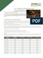 EEG Einspeiseverguetung - das bringen Photovoltaikanlagen.pdf