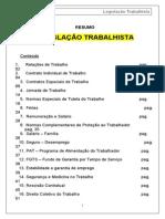 50064872 Resumo Geral de Direito Do Trabalho