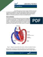 ECG y Circulacion Periferica Alumnos