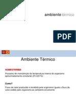 Ap4_GAI_MIEMEC_amb_térmico_iluminação