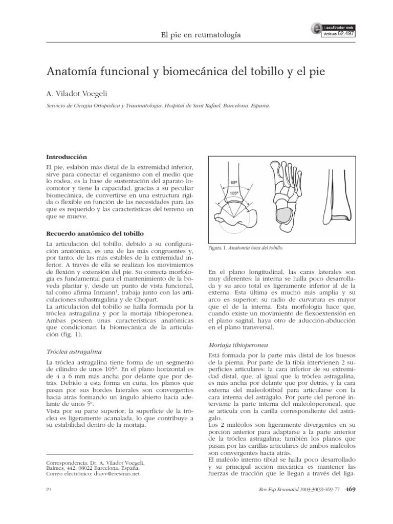 Anatomia Funcional Tobillo y Pie