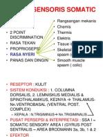 Sistem Sensoris Somatic