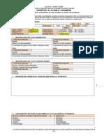 Formato Limpio Anamnesis 2010