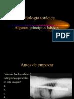 7radiologiatoraxcompleto-100507004532-phpapp01