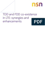 Nsn Td-fdd-lte Co-existence White Paper