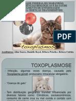 Slides Para o Trabalho de DT - Toxoplasmose