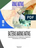 2653 Bacterias