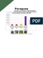 Paraguay - Inequidad, En Pocas Cifras, En Una Tabla - Vicente Brunetti