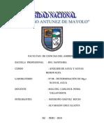 practica de laboratorio Nº 08 (mg,ni).doc