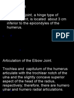 Elbow Joint and Radio Ulnar Joints