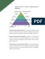 Tipos de Sistemas Segun El Nivel de Organizacion y Funcion Empresarial