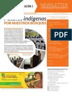 ICCO Centroamerica Newsletter marzo 2014.pdf