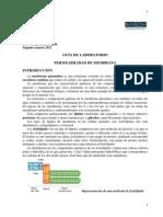 2013Guia_Permeabilidad_de_membrana.pdf