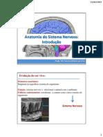 Anatomia Do Sistema Nervoso.pptx Aula 1