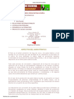 Cedro - Analisis Global del Narcotrafico.pdf