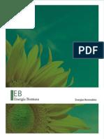 Libro Energia Biomasa