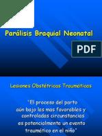 Ua02 Paralisis Braquial