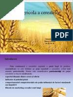 Piata Agricola a Cerealelor