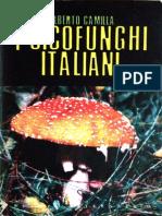 Psicofunghi italiani