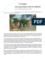 La Fougère - Plante Qui Protège Contre la Radiation 2014