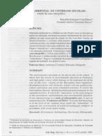 EDUCAÇÃO AMBIENTAL NO COTIDIANO ESCOLAR