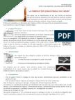 DOC1 La Fabrication Industrielle Du Yaourt