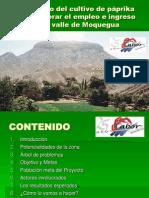 Presentacion Proyecto Paprika