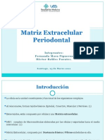 Matriz Extracelular Periodontal Completo (Modif1)