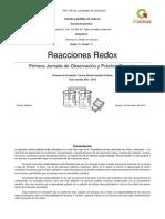 Unidad didactica redox corregida.docx