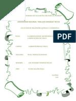 Informe de Fisica (Elaboracion de Un Informe)Lim
