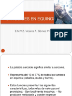 Sarcoides en Equinos