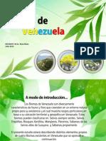biomasdevenezuela-120725091616-phpapp01