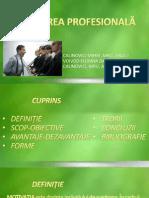 MOTIVAREA PROFESIONALA 97+03 powerpoint 97 si 03