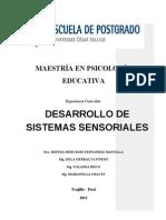 Modulo Desarrollo de Sistemas Sensoriales