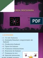 fuziuneanucleara-cristinacatalinaadela1-130321065117-phpapp02
