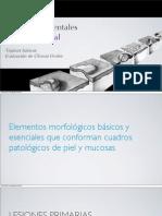 61504081 Lesiones Elementales de Mucosa Oral Evaluacion Clinica de Ulceras Orales
