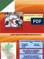 DIVERSIFICACION 2012