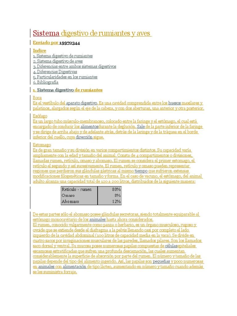 Anatomia y Fisiologia de Los Rumiantes