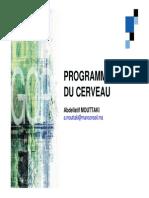 02programmation Du Cerveau