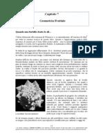 Capitolo 7 - Geometria Frattale