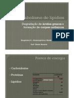 Degradacao-lipidios Gisele 311013