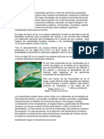 insecticidas marco teorico.docx