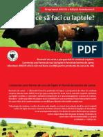 Program Angus x Baltata Romaneasca