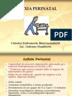 asfixia perinatal++.ppt