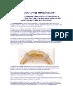 CONDUCTORES BIOLÓGICOS.doc