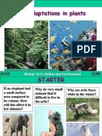 5.2 plant adaptation.ppt