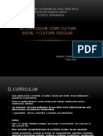 Curriculum Dicertacion