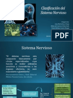 clasificaciondelsistemanervioso-140218192113-phpapp01