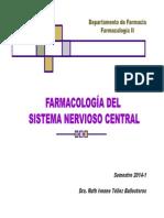1_2do P SNCentral.pdf