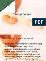 Nutrisi Esensial